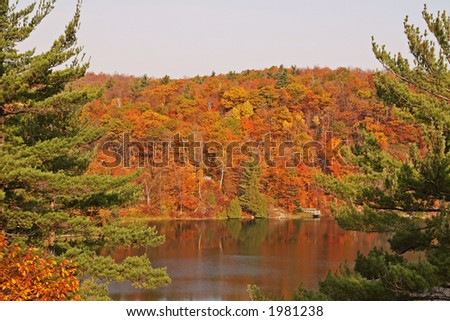 Overview if Pink lake - stock photo