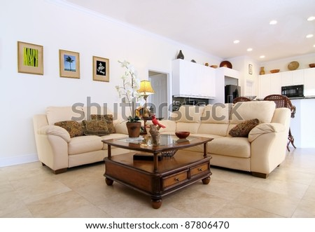 Overview of a beautiful classic family room  in a private residence  with the open kitchen in the background - stock photo