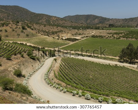 Overview of vineyards in Casablanca Valley, Chile - stock photo