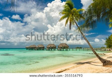 Overwater bungalows in a beach in Tikehau, Tahiti - stock photo