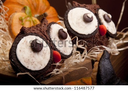 Owl muffins - stock photo