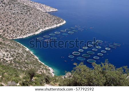 Oyster breeding aquatic facility, Mediterranean Sea, Greece - stock photo