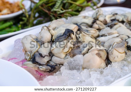 oyster fresh ready to eat thailand style - stock photo