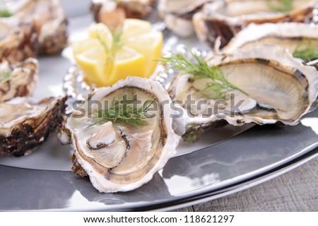 oyster platter - stock photo