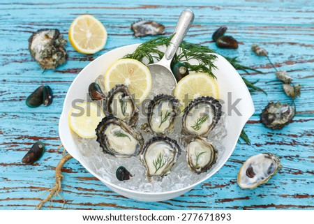 Oyster seafood lemon dill fresh mussel asia appetizer luxury - stock photo