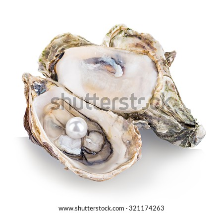 Oyster with pearls isolated on white background - stock photo