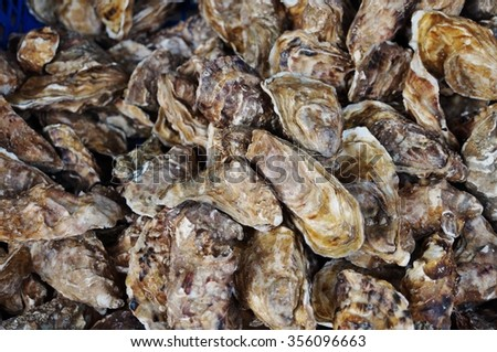 Oysters from Brittany in the shell at a Cancale market - stock photo