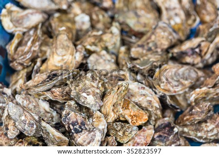 Oysters market in Cancale, Brittany, France. Shot with a selective focus - stock photo