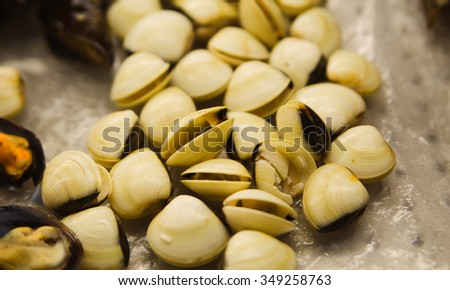 Oysters, mussels and scallops on asian market - stock photo