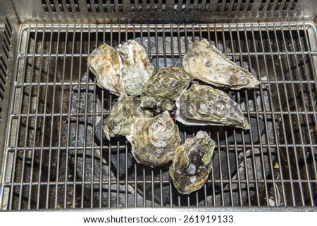 Oysters on the grill - stock photo