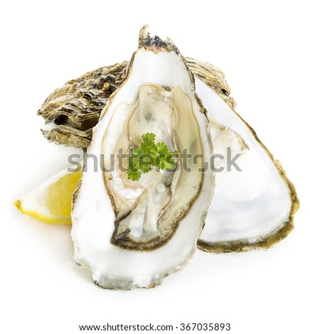 Oysters with lemon and parsley close-up isolated on a white background. Seafood. - stock photo