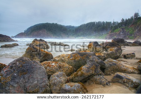 Pacific Northwest coastline in Oregon - stock photo