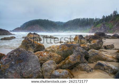 Pacific Northwest coastline in Oregon - stock photo