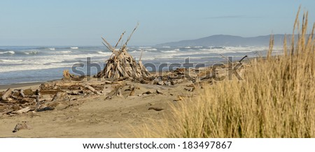 Pacific ocean sand and driftwood at Bullards Beach State Park near the mouth of the Coquille River, in Bandon Oregon - stock photo
