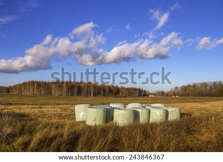 Pack of silages on a field. - stock photo