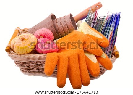 packets of seeds, flower bulbs gladiolus, orange gardening gloves peat pots for seedlings in a basket on a white background  - stock photo