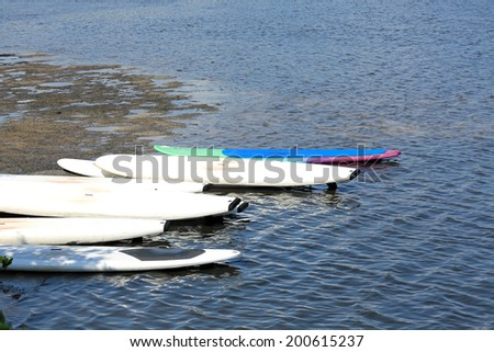 Paddle boards ready for a group outing - stock photo