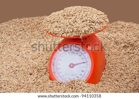 paddy with steelyard on brown background - stock photo
