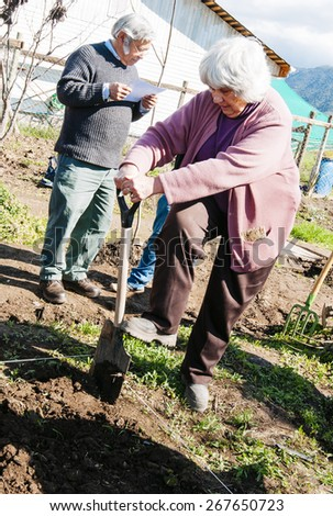 Paine, Chile.- August 29, 2011: group of farmers Seniors agricultural instruction. - stock photo