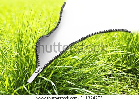 Paint roller and true grass paint stripe. Concept for green ecology - stock photo