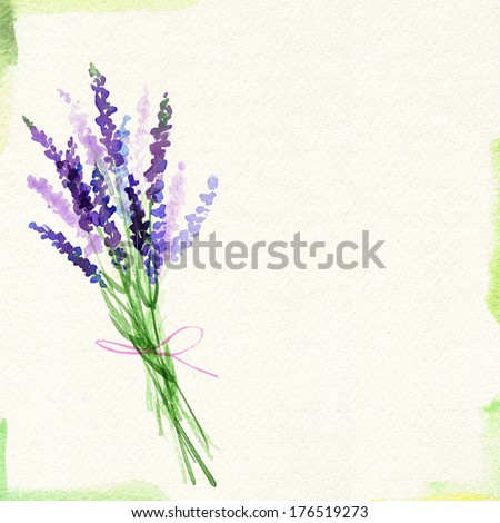 Painted watercolor card with lavender bouquet - stock photo