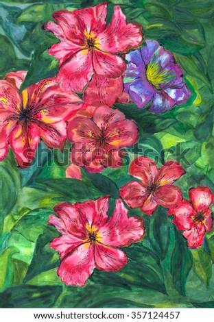painting watercolor  vivid garden flowers - stock photo