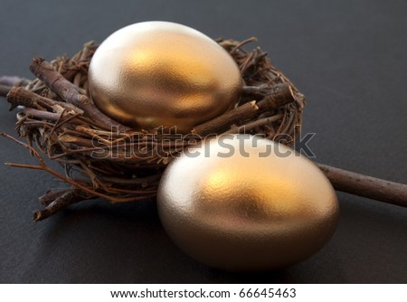 Pair of golden eggs in a sturdy nest - stock photo