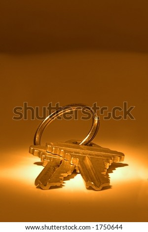 pair of house keys under spotlight - stock photo