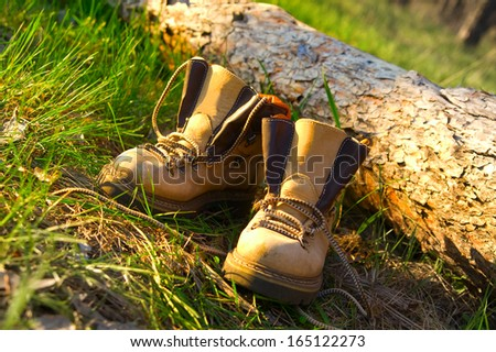Pair of trekking boots in sunny forest near fallen tree. Selective focus on boots. - stock photo
