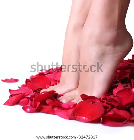 Pair of well-groomed feet against from petals of red roses, isolated on a white background, please see some of my other parts of a body images - stock photo