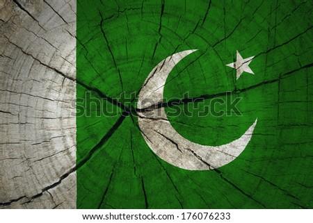 Pakistan Flag on wood background - stock photo
