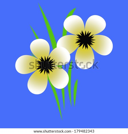 pale yellow flowers with black centers illustration  - stock photo