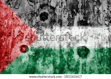 Palestine flag on a weathered grunge background - stock photo