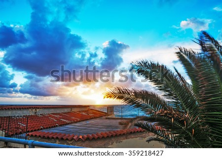 palm and terrace by the sea at sunset, Italy - stock photo