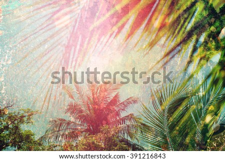 Palm Branches Leaves Sun Light Hot Nature Landscape Tropical Background Holiday Travel Design Toned Shabby Vintage Effect - stock photo