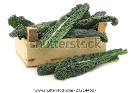 "Palm Cabbage ""Black from Tuscany"" (Cavolo Laciniato ""Nero di Toscana"") also known as black cabbage in a wooden crate on a white background - stock photo"