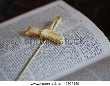Palm Cross on Bible - stock photo
