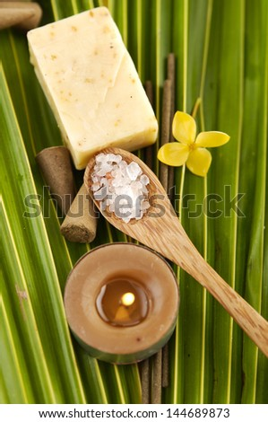 Palm Frond with yellow orchid flower ,soap, candle ,salt in spoon - stock photo