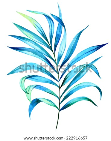 palm leaf. watercolor tropical leaves. - stock photo
