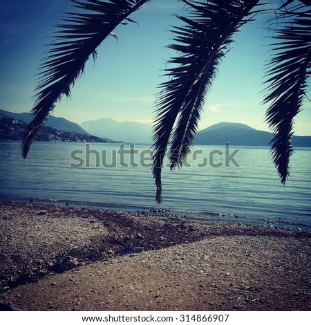 Palm leaves against blue sky, mountains near the sand beach against blue sky in summer period. Montenegro, herceg novi. Retro style filter. Image. - stock photo