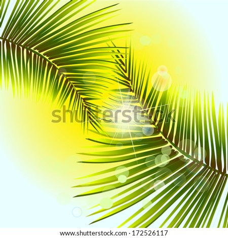 palm leaves amid sunlight. Raster - stock photo