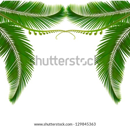 Palm leaves on white background. Raster version of vector - stock photo