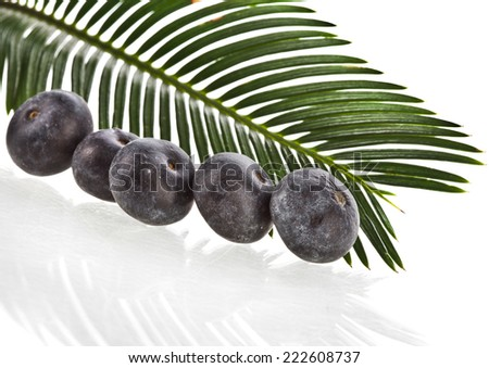 palm leaves with fresh fruits isolated on white background. - stock photo