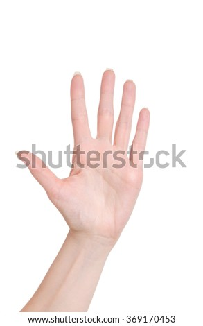Palm of a woman hand on a white isolated background, five fingers - stock photo