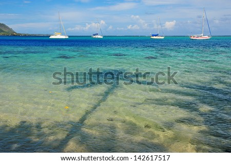 Palm Shadow and Sailboats off Moorea, Tahiti in French Polynesia - stock photo