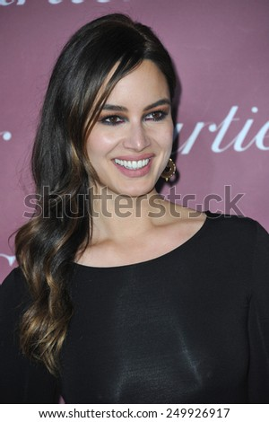 PALM SPRINGS, CA - JANUARY 6, 2015: Berenice Marlohe at the 2015 Palm Springs Film Festival Awards Gala at the Palm Springs Convention Centre.  - stock photo