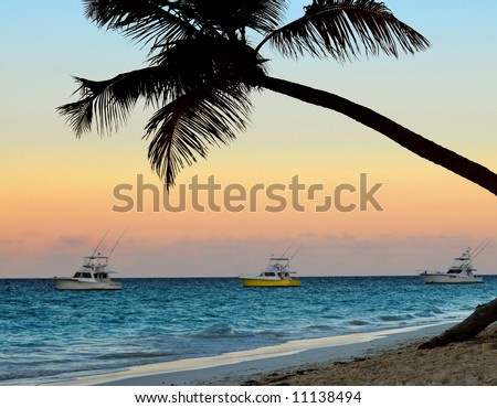 Palm tree and fishing boats at tropical beach at sunset. Focus on palm tree. - stock photo