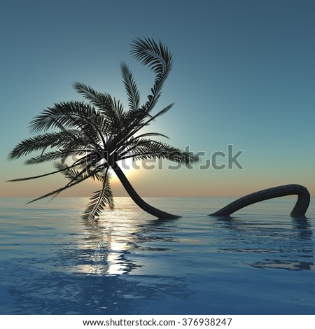 palm tree at sunset in the ocean, palm tree in the sea, sea sunset - stock photo