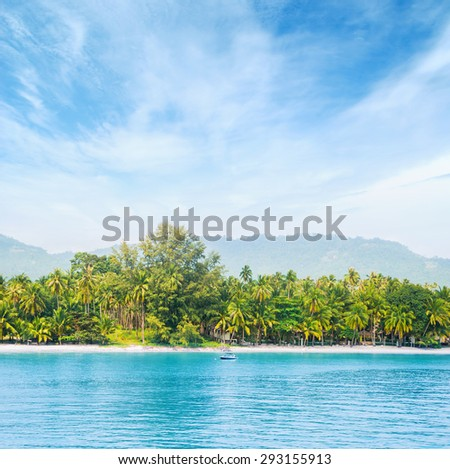 Palm tree forest, beach and mountains. Samui island, Thailand. - stock photo