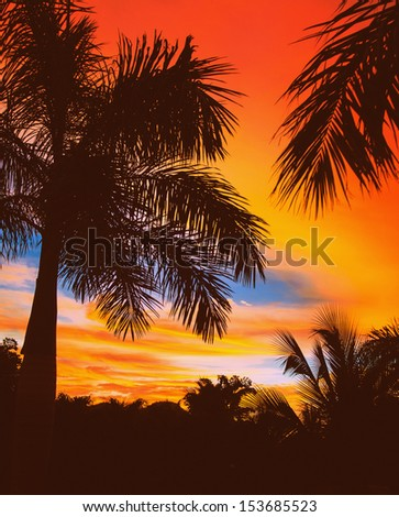 Palm tree. Guanacaste, Costa Rica. Travel concept - stock photo